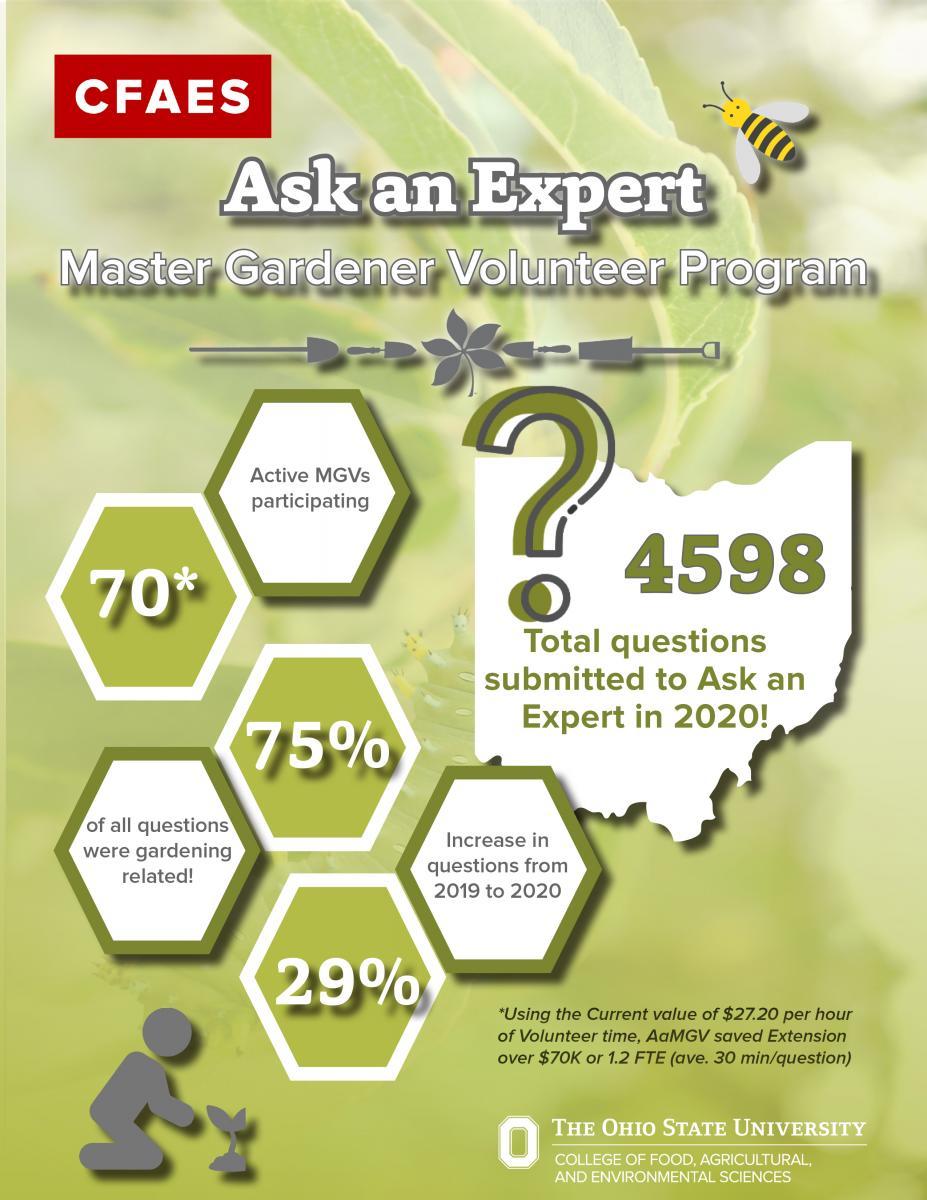 Ask an Expert Stats