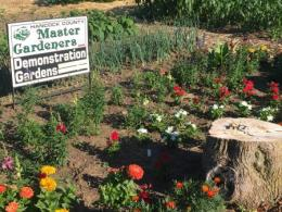 Hancock County MGV Demonstration Garden