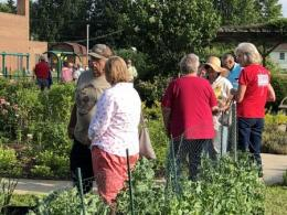 An Evening Garden Affair with a focus on Agrability